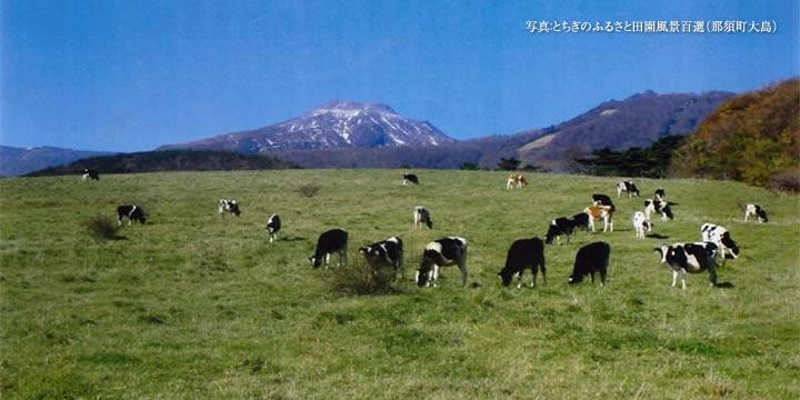 とちぎのふるさと田園風景百選(那須町大島)